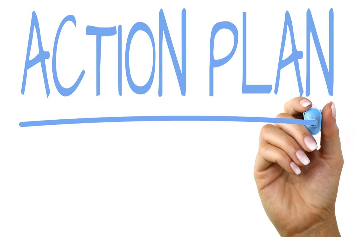 Image result for action plan