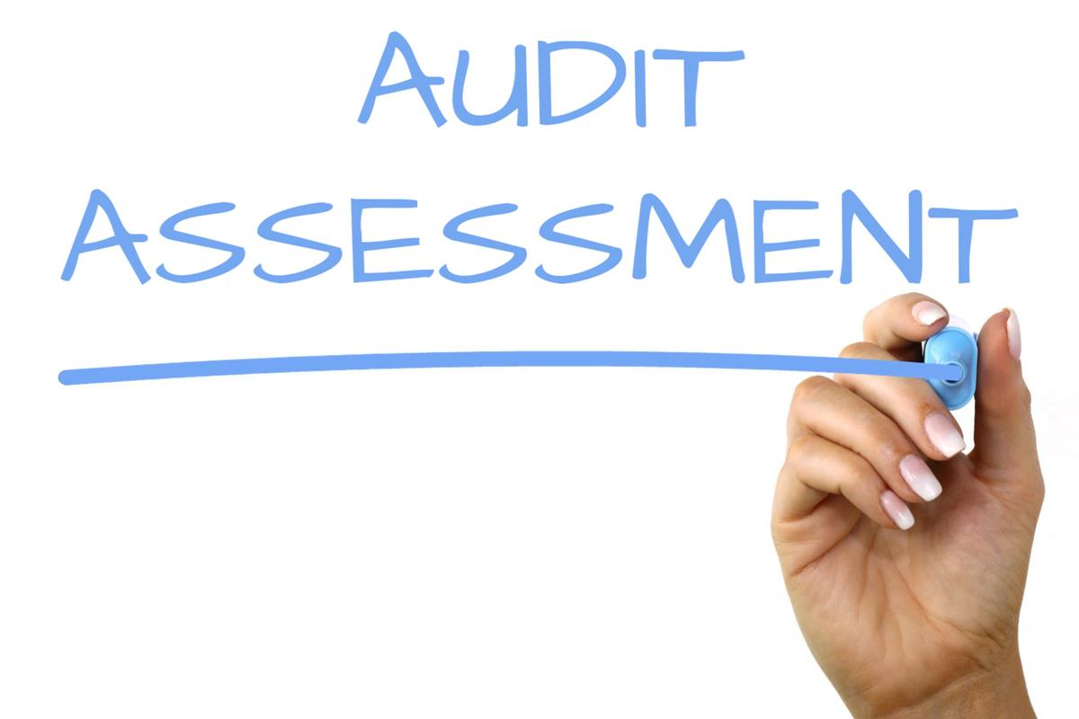 Audit Assessment