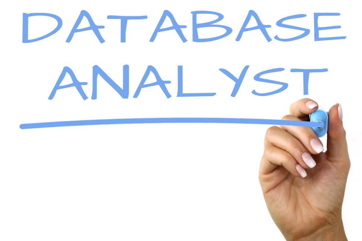 Database Analyst