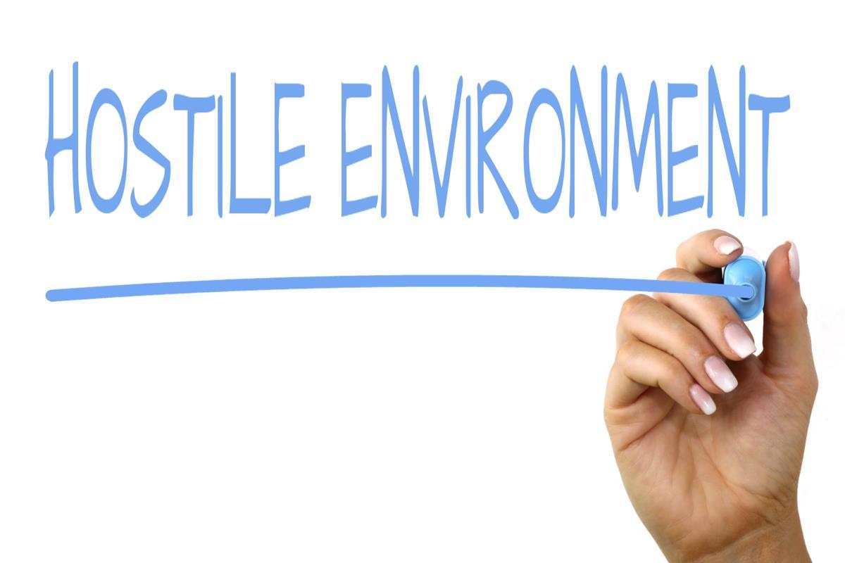 Hostile Environment
