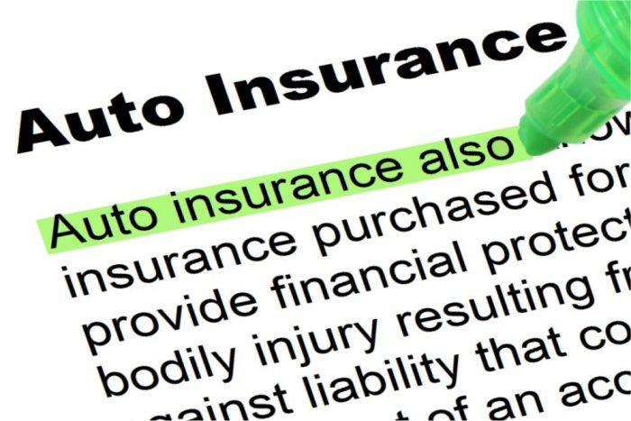 auto insurance highlighted words and phrases