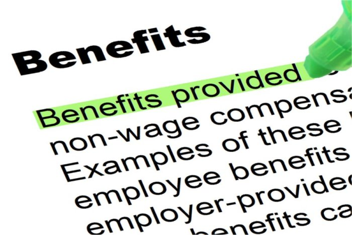 a description of employees benefits required by the constitution Foreigners often refer to brazil as a country with very strict labour laws and too many benefits for its employees in this article we will learn more.
