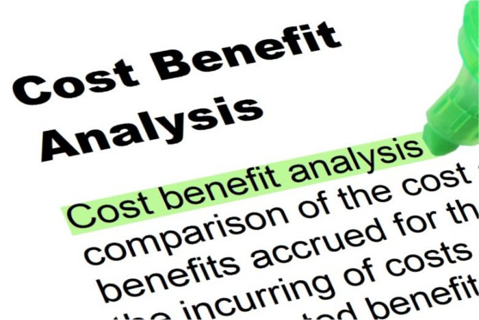 Cost Benefit Analysis  Highlighted Words And Phrases