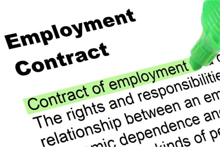 Employment Contract  WowcircleTk