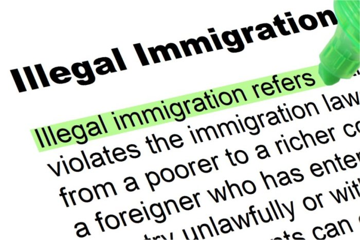 Image result for Immigration Law