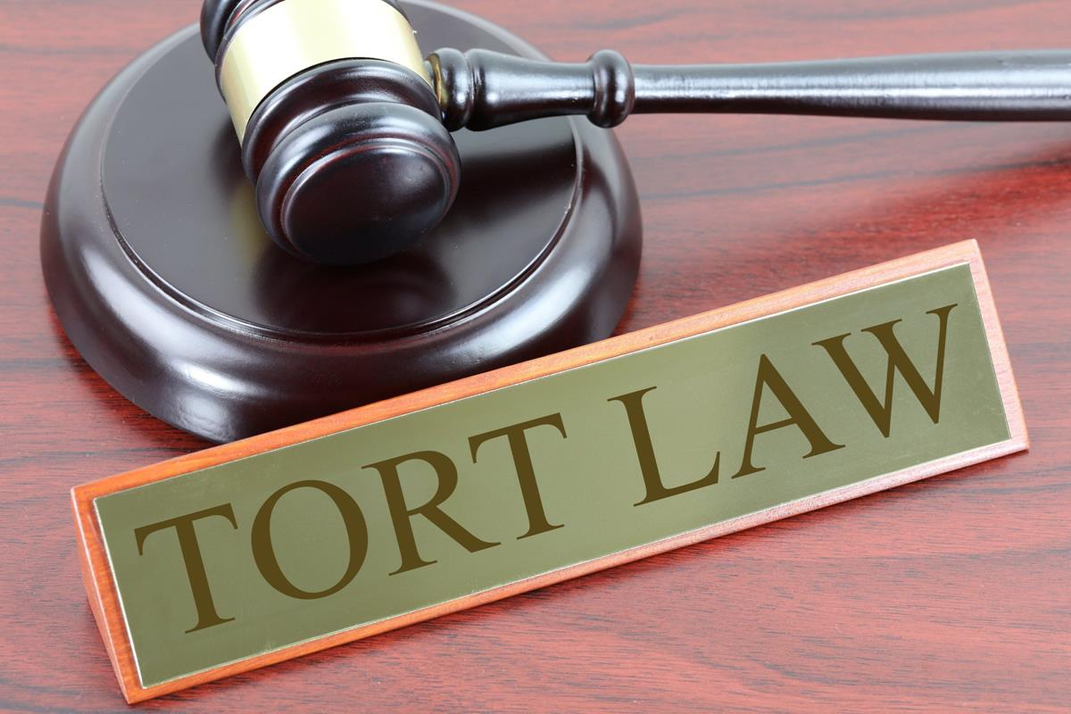 Tort Law - Legal image