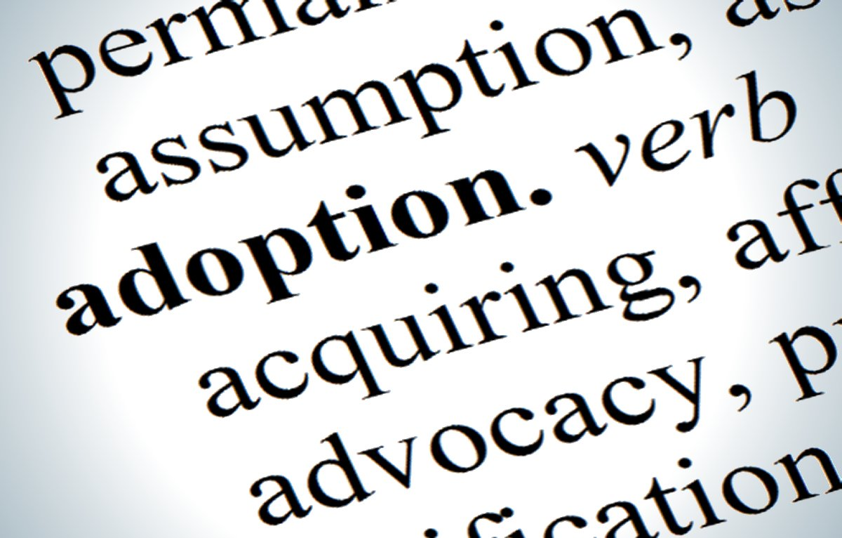 research paper outline on adoption